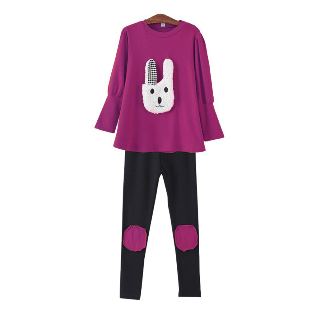 9d17c884d50d My Sky Little Girls 2 Pieces Clothing Set Bunny Outfit Dress Top+Leggings  Pants: Amazon.ca: Clothing & Accessories