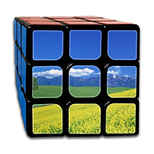Cool 3x3x3 Puzzle Cube Toy Ultra-Smooth Stress Reducer For ADHD Hand Killing Time Custom Design (Papas And Beer Halloween Party)