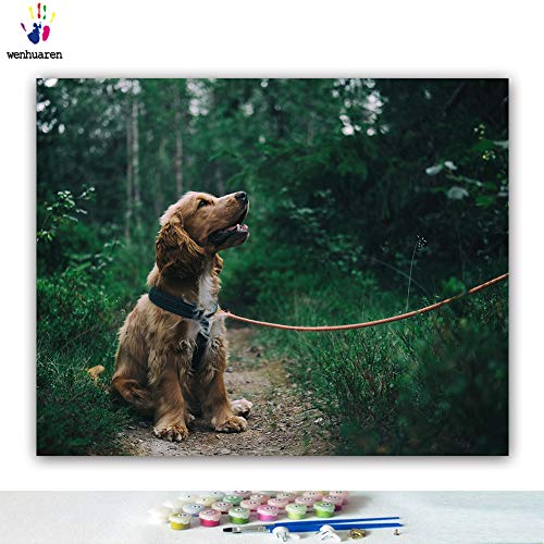 Paint by Number Kits Canvas DIY Oil Painting for Kids, Students, Adults Beginner with Brushes and Acrylic Pigment -Nature's pet Dog Teddy White Curled Animal Dog (21812, 16x20 with ()