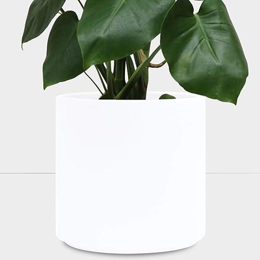 Macetero grande de color blanco. Cilindro de cerámica con diseño moderno. Contenedor para plantas, macetas de jardín, perfecto para plantas de interior, plantas suculentas, plantas de casa y soportes para plantas.: Amazon.es: