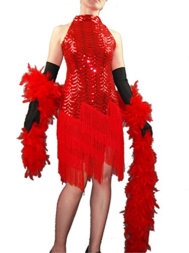 Whitewed Sequin Fringe Great Gatsby Flapper Dresses Halloween in the 1920's