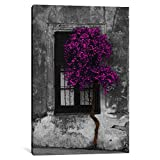 iCanvasART 1 Piece Tree in Front of Window Purple Pop Color Pop Canvas Print by Panoramic Images, 1.5 by 40 by 26-Inch