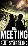 The Meeting: A Seventeen Series Short Story #3