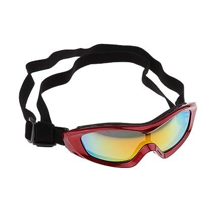Fenteer Gafas Protectoras para Mascotas Grandes Ropa Ocular ...