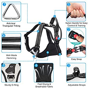 Babyltrl Big Dog Harness No-Pull Anti-Tear Adjustable Pet Harness Reflective Oxford Material Soft Vest for Large Dogs Easy Control Harness (Silver, L)
