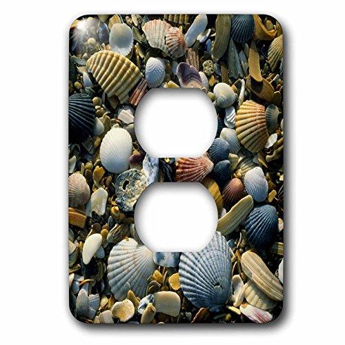 3dRose LSP _ 93284_ 66Cape Hatteras playa conchas, bancos, exterior nc-us34ssm0000-scott T. Smith-2Plug Outlet...