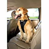 Tru-Fit Smart Dog Harness with Seat Belt Tether, My Pet Supplies