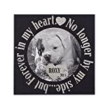 P Lab Personalized Granite Pet Memorial Stone w 'Your Pet Photo' Customized Tombstone - Loss of Pet Gift- Indoor Outdoor Dog or Cat For Garden Backyard 12'' x 12'' #11