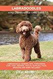 Labradoodles: Labradoodles General Info, Purchasing, Care, Cost, Keeping, Health, Supplies, Food, Breeding and More Included! A Pet Labradoodle Care Guide