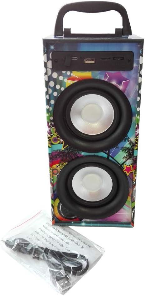 Altavoces Portatil Reproductor MP3 FM Micro SD con Puerto USB Entrada para microfono Karaoke (Modelo 2)