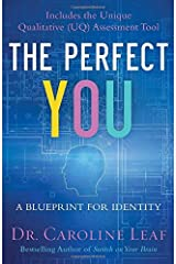 The Perfect You: A Blueprint for Identity Hardcover