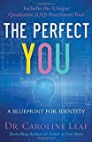 img - for The Perfect You: A Blueprint for Identity book / textbook / text book