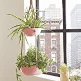 Better Homes and Gardens Double Hanging Planter, Parquet (Pink)