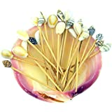 Real Shellshell & Wood Toothpick Party Pack in a Conch Shell Fun Beach Tiki Bar Gift