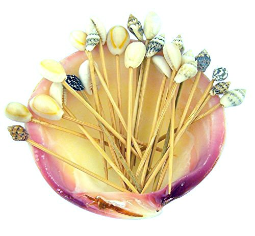 Real-Shellshell-Wood-Toothpick-Party-Pack-in-a-Conch-Shell-Fun-Beach-Tiki-Bar-Gift