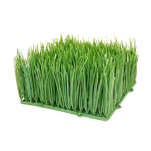 Handy Pantry Large Artificial Wheat Grass | Artificial Wheatgrass for Home Decor, Office Decor, Kitchen Decor | Fake Plants for Decoration, Faux Wheat Grass (12
