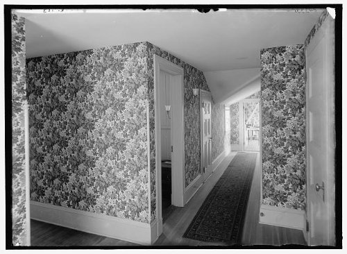 HistoricalFindings Photo: Hall,floral wallpaper,clubhouse,passageways, York,Detroit Publishing Co,1900