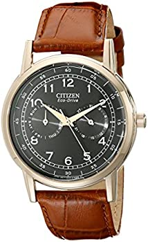 Citizen AO9003-08E Stainless Steel Eco Drive Mens Watch