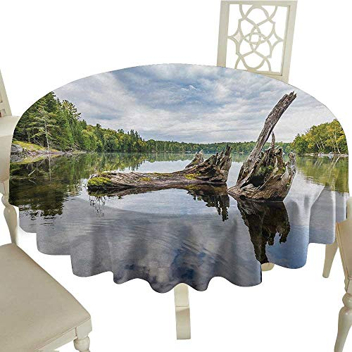 Tablecloth Stain Resistant Driftwood,Remains of a White Cedar Tree Trunk in The Lake and The Sky Digital Image,Green Pale Grey D54,for Umbrella Table ()