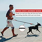 Hands Free Dog Leash for
