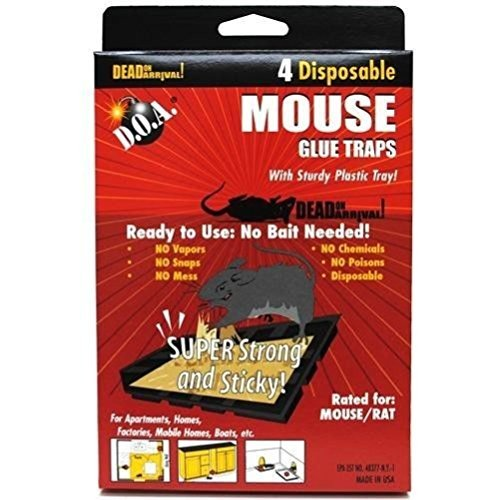 Comixpro Lot Of 4 Mice Mouse Sticky Glue Traps Trays