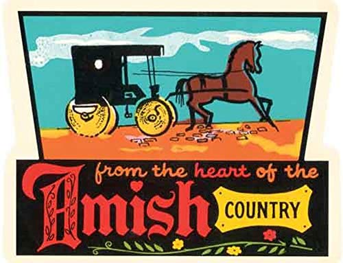 (Amish Country Horse and Buggy)