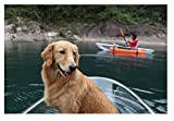 ClearYup Jet Powered Kayak Motor Mount with Remote Control Two Person Kayak Transparent Canoe Seethroughcanoe Made by Clear Polycarbonate Sheet
