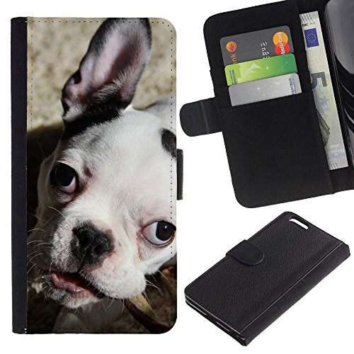 OMEGA Case / Apple Iphone 6 PLUS 5.5 / bulldog boston terrier puppy dog / Cuir PU Portefeuille Coverture Shell Armure Coque Coq Cas Etui Housse Case Cover Wallet Credit Card