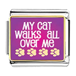 Chicforest Gold Plated Cat Walks Over Me Bracelet Link Photo Italian Charms