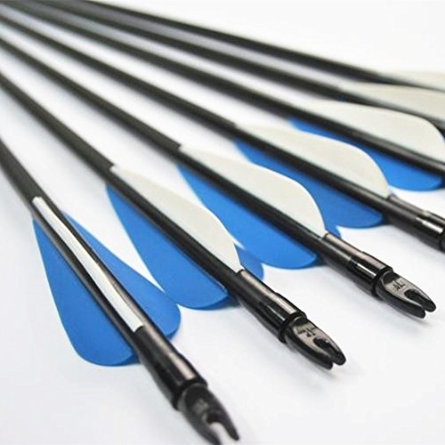 12pk Archery Hunting Fiberglass Arrows with Replaceable Targer Poits for Compound Bow (Safety Glass Arrows)