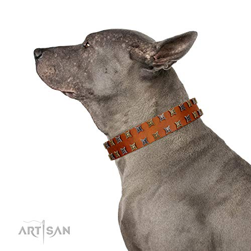 FDT Artisan 18 inch Terra-Cotta Tan Leather Dog Collar with Two Rows of Studs - Exclusive Handcrafted Item - 1 1/2 inch (40 cm) Wide - Gift Box -
