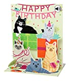 Up With Paper Sound 3D Pop-Up Birthday Card Pet Family 18x13 cm
