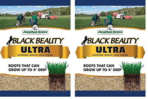 Jonathan Green Black Beauty Ultra Grass Seed, 1-Pound (1-Pound 2-Pack)