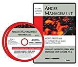 Anger Management Video Program: An Instructional Guide for Practitioners (Practical Therapist)