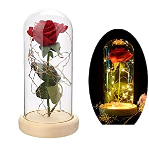 Rose Lasts Artificial Flower Forever Led Light in Glass Dome Love Forever Gift for Wedding Valentine's Day Anniversary Birthday 30