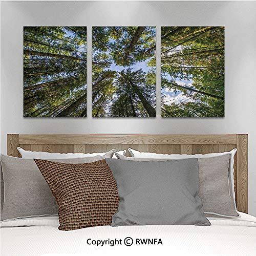 3PCS Triple Decoration Painting Wild Jungle Moss Forest Crown Trees Leaves Nature Photo Artwork Print Living Room Dining Room Studying Aisle Painting,19.7