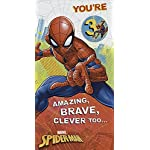 3rd Boy Spiderman Age 3 Today Birthday New Uk Greeting Card with Badge
