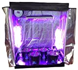 16 Site Hydroponic System Grow Room – Complete Grow Tent