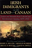 Irish Immigrants in the Land of Canaan, , 0195154894