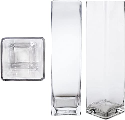 Mega Vases Square Cube 4 Inch x 16 Inch, Decorative Clear Glass Vase with Sturdy Base, Wedding Centerpieces, Flower Bouquets, Home Decor, Celebrations, Parties, Event Planning, Arts Crafts