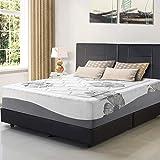 Olee Sleep 12 Inch Gel Infused Top Tencel Memory Foam Mattress (Queen) 12FM01Q