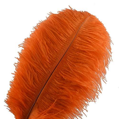 Sowder 10pcs Ostrich Feathers 12-14inch(30-35cm) Plume Home Wedding Decoration (Orange)