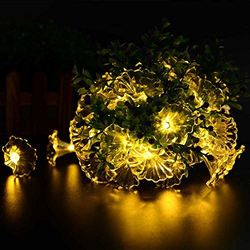 20' Island Decor (TOPCHANCES Waterproof Solar Outdoor String Lights 20ft 30 LED String Christmas Lights Powered String lights (Warm White))