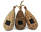 Set of 3 Hand Woven Teardrop Shaped Small Hanging Birdhouses Review