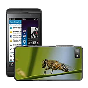 Super Stella Slim PC Hard Case Cover Skin Armor Shell Protection // M00144922 Hoverfly Insect Macro Nature // BlackBerry Z10