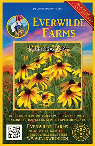 (Everwilde Farms - 2000 Gloriosa Daisy Native Wildflower Seeds - Gold Vault Jumbo Seed Packet)