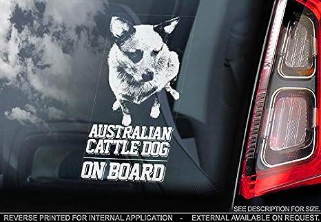 Amazon.com: Pegatina para ventana de coche, diseño de perro ...