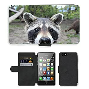 GoGoMobile Flip PU Leather Wallet Case with Credit Card Slots // M00118392 Raccoon Animal Fur Cheeky Cute // Apple iPhone 4 4S 4G