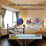 2 Pack 6w U-VC fixture Lamp 9.3 Inches Length