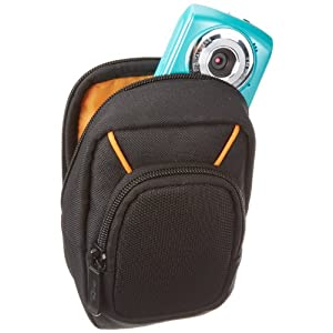 AmazonBasics Large Point and Shoot Camera Case